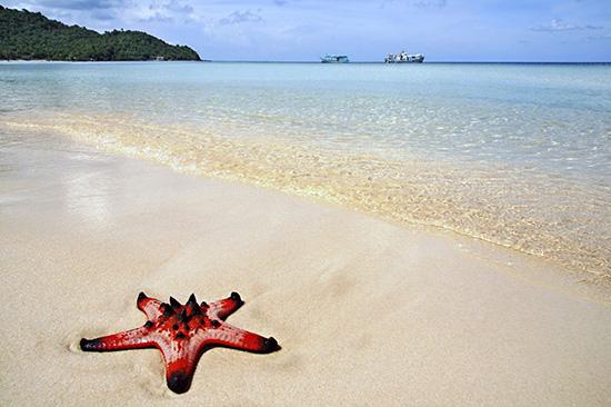 Top 4  địa điểm vui chơi Phú Quốc khiến du khách chao đảo 1