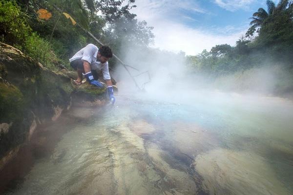 Dòng sông kì lạ luộc chín mọi sinh vật tại Amazon 4