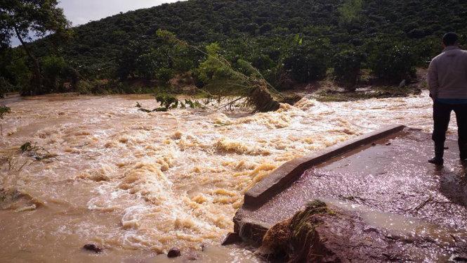 Nha Trang ngập lụt, nhóm người Nga thích thú bơi lội giữa phố 3