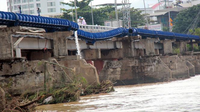 Nha Trang ngập lụt, nhóm người Nga thích thú bơi lội giữa phố 1