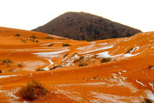 Hình ảnh tuyết rơi trên sa mạc Sahara khiến mọi người trầm trồ 6