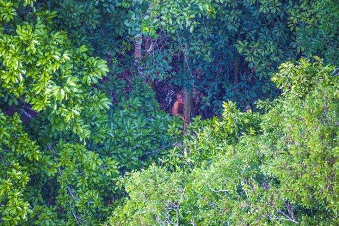 Những hình ảnh về bộ tộc Amazon thần bí 2