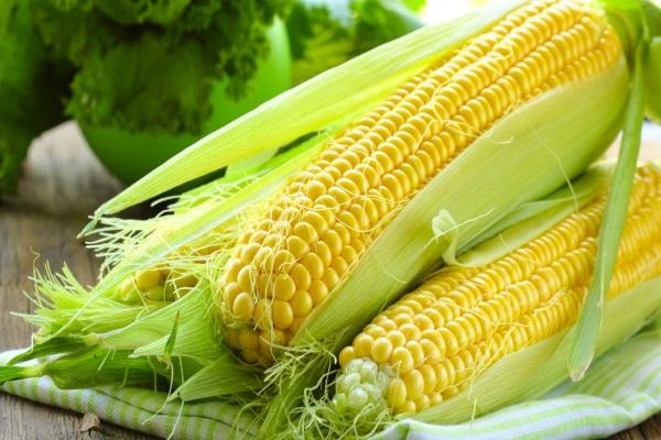 7 lợi ích tuyệt vời của bắp ngô đối với sức khỏe 1