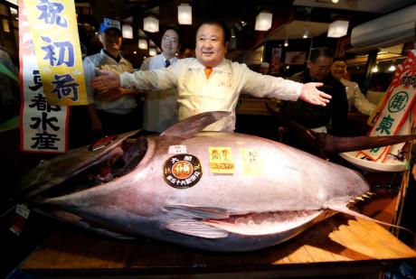 Chủ nhà hàng sushi gây sốc khi bỏ hơn 14 tỷ đồng mua 1 con cá ngừ 1