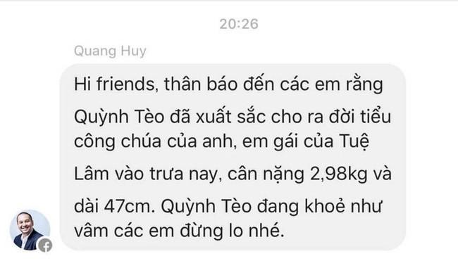 Vợ chồng Phạm Quỳnh Anh, Quang Huy chào đón con gái thứ hai 1