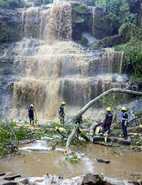 Hình ảnh 20 người tử vong vì bị cây rơi từ đỉnh thác đè trúng số 1
