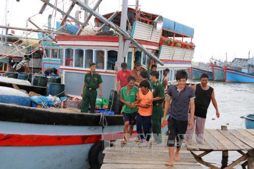 Cứu thành công 28 ngư dân Quảng Ngãi bị nạn trên biển 1