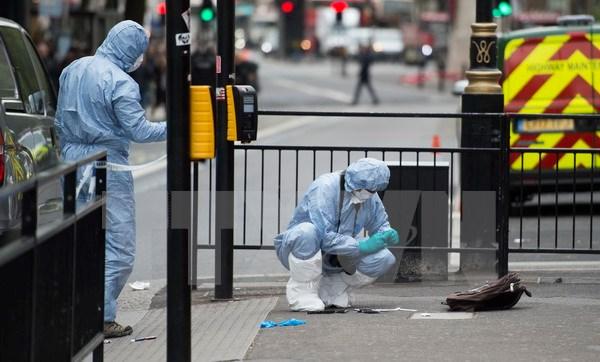 Bắt kẻ cầm dao âm mưu khủng bố gần tòa nhà Quốc hội Anh 1