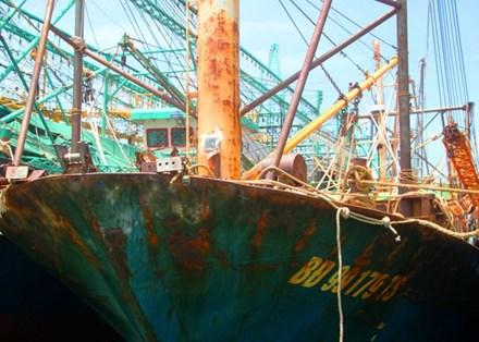 Tàu cá vỏ thép bị hỏng hàng loạt: Thủ tướng yêu cầu làm rõ 1