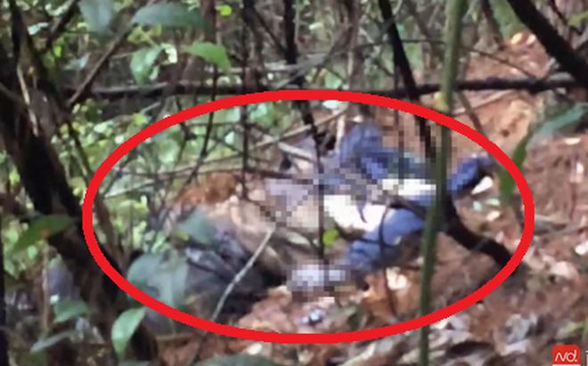 Phát hiện thi thể phân hủy khi đang livestream trong rừng 1