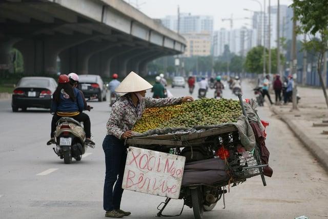 Hà Nội sẽ cấm bày bán hoa quả trên vỉa hè, bán rong trên đường 1