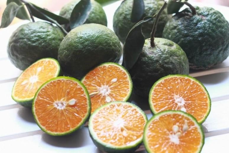 6 loại trái cây mọng nước rất tốt cho mùa hè 6