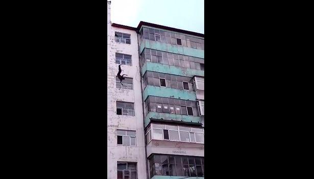 Rơi từ sân thượng tòa nhà 7 tầng, người đàn ông may mắn sống sót 1