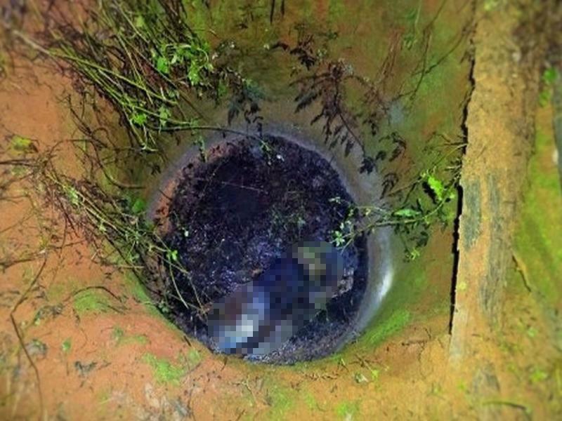 Hình ảnh Tá hỏa phát hiện xác chết dưới giếng nước tưới cà phê số 1