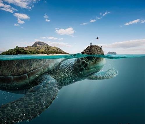 Những hòn đảo ngầm và sự thật bên dưới khiến nhiều người giật mình 5