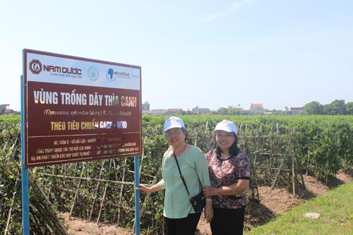 Giải mã viên uống hỗ trợ điều trị tiểu đường số 1 Việt Nam 3