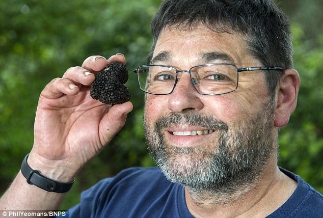 Người đàn ông đào vườn vô tình phát hiện loại nấm quý hiểm, vô cùng đắt đỏ 4