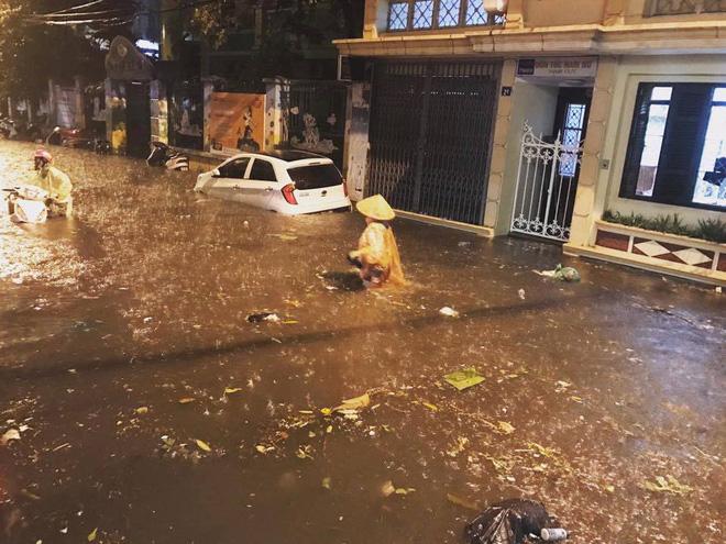 Hình ảnh Hà Nội mưa lớn, phố ngập như sông, giao thông hỗn loạn số 4