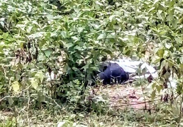 Phát hiện thi thể người đàn ông tử vong bất thường trong rừng 1