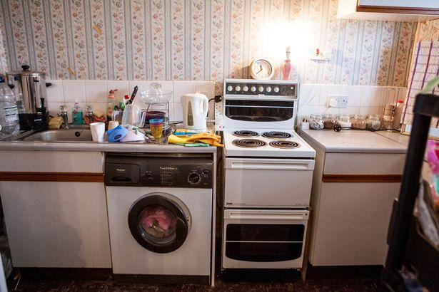 Lý do bất ngờ người phụ nữ sống 4 năm trong căn nhà bẩn nhất thế giới 6