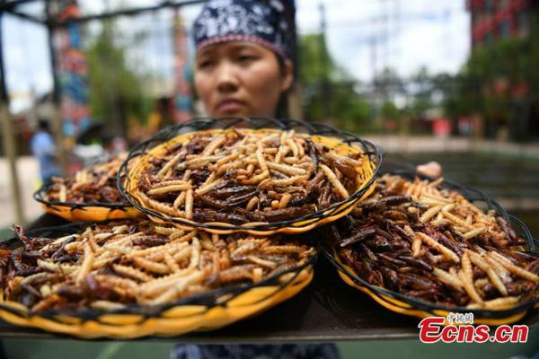 Cuộc thi ăn côn trùng nhận thanh vàng 24K ở Trung Quốc 2