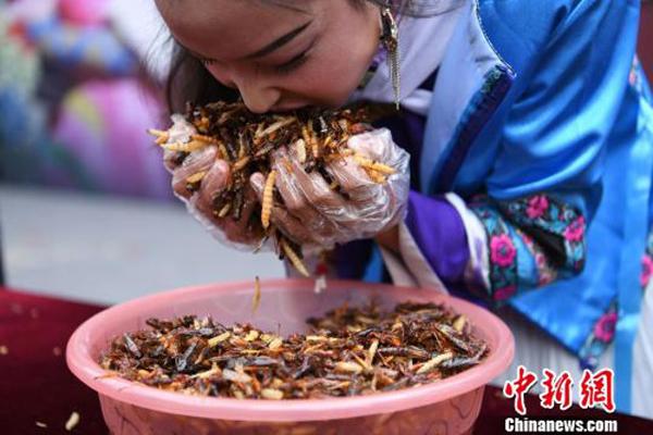Cuộc thi ăn côn trùng nhận thanh vàng 24K ở Trung Quốc 3