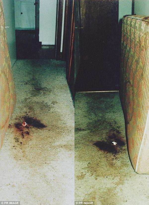 Hình ảnh Những vết máu sót lại và vụ mất tích bí ẩn của nữ nhà báo xinh đẹp 22 năm chưa lời hóa giải số 2