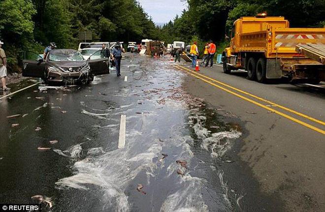 Kinh hoàng cảnh hơn 3,4 tấn lươn đổ nhầy nhụa ra đường  4