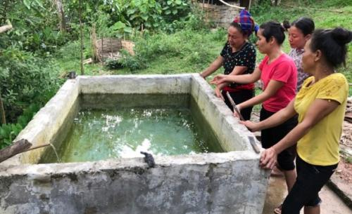 Bố chết lặng khi nhìn thấy hai con nhỏ chết trong bể nước ăn 1