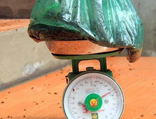 Người dân khốn khổ vì ruồi chết tính bằng cân: UBND Hà Nội vào cuộc 1