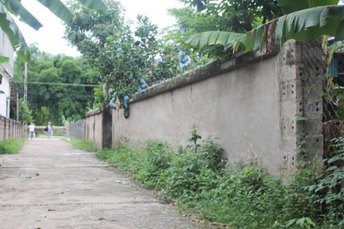 Hình ảnh Độc đáo làng bích họa ở bản làng Hải Sơn số 1