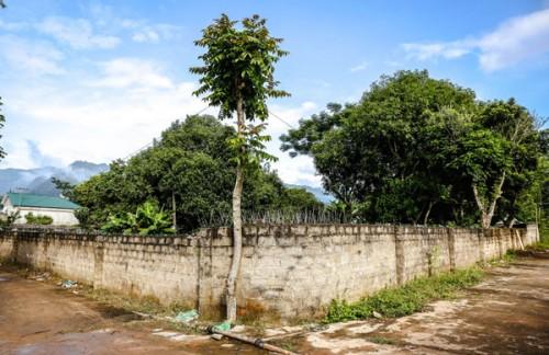 Hình ảnh Độc đáo làng bích họa ở bản làng Hải Sơn số 2