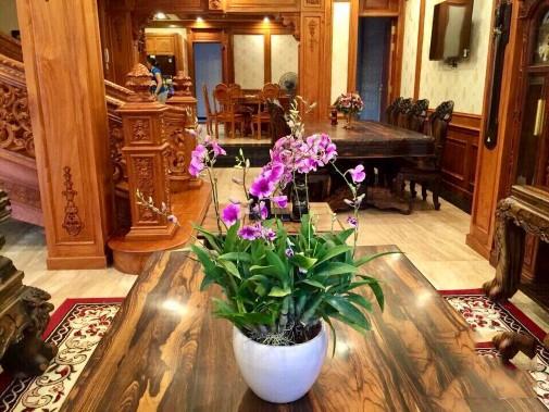 Hình ảnh Căn nhà rao bán 55 tỉ đồng, nhìn nội thất bên trong ai cũng choáng ngợp số 7