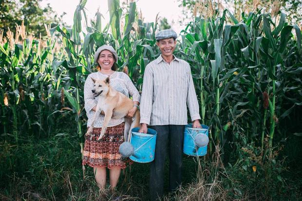 """Hình ảnh Câu chuyện xúc động về bộ ảnh cưới """"chăn trâu-mót lúa"""" của đôi vợ chồng Sóc Trăng số 2"""
