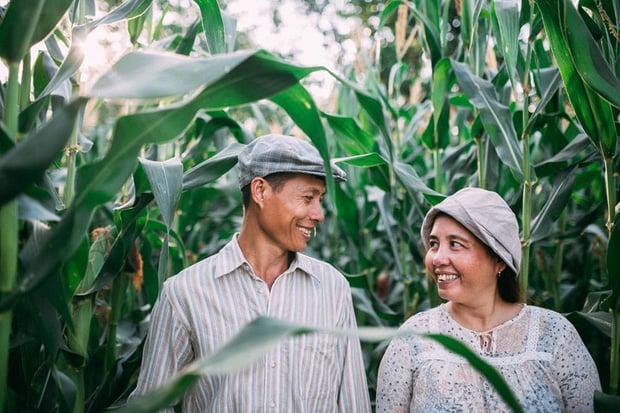 """Hình ảnh Câu chuyện xúc động về bộ ảnh cưới """"chăn trâu-mót lúa"""" của đôi vợ chồng Sóc Trăng số 3"""