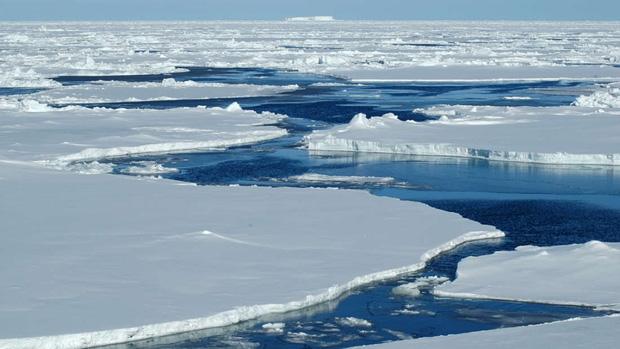 Tìm thấy thứ này ở Bắc Cực, giới khoa học đang lo lắng cực độ 3