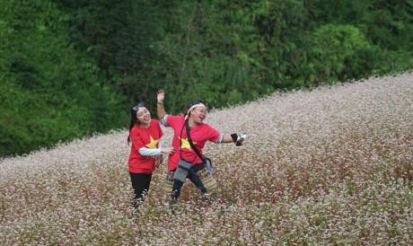 9X quỳ gối cầu hôn bạn gái giữa cánh đồng hoa tam giác mạch gây sốt MXH 2