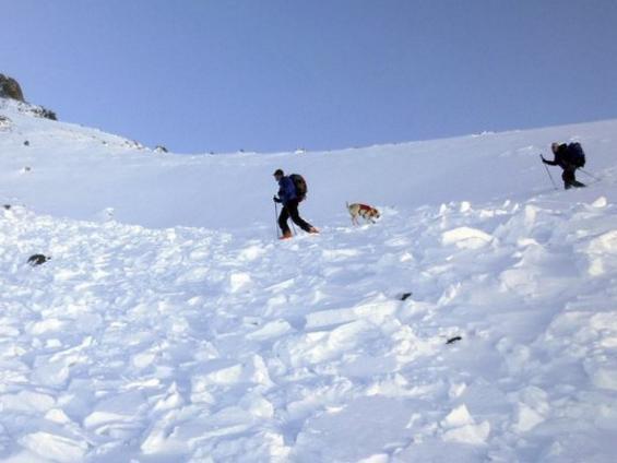 Hình ảnh Nhà leo núi quyết định tự sát khi người bạn đồng hành bị tuyết chôn vùi số 1