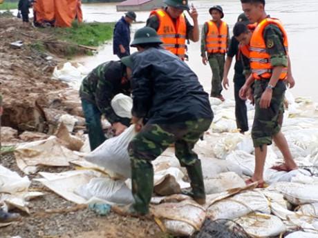 Hình ảnh Thanh Hóa: Lao cả máy xúc ngăn vỡ đê sông Cầu Chày số 3