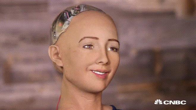 Vừa nhận quyền công dân, nữ robot Sophia đã phạm pháp! 1