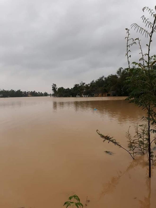 Thủy điện xả lũ, Quảng Nam, Đà Nẵng trắng xóa nước lũ 3