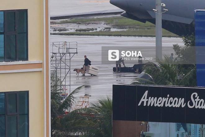 Đặc vụ Mỹ vừa xuống sân bay Đà Nẵng, mang theo chó nghiệp vụ và thiết bị chuyên dụng 5