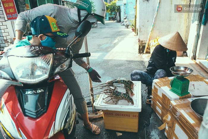 Mang tôm hùm từ vùng tâm bão số 12 lên Sài Gòn, người nuôi nghẹn ngào bán với giá rẻ 1