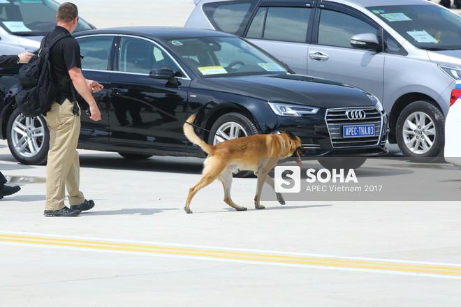 Đặc vụ Mỹ sử dụng ống nhòm, dắt chó nghiệp vụ kiểm tra an ninh nghiêm ngặt khi đón TT Trump tại Đà Nẵng 10