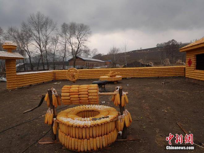 Nông dân xây nhà bằng 20.000 bắp ngô khiến hàng xóm choáng váng 2