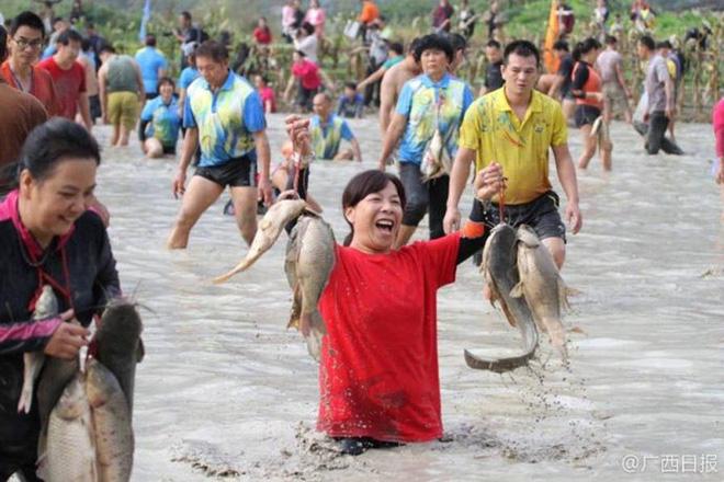 600 người quần thảo dưới đầm lầy, săn bắt, giành giật hơn 3000 con cá 2