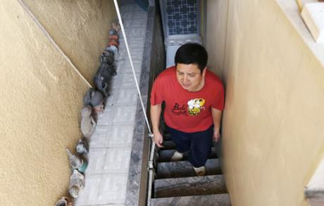 Hình ảnh NSƯT Chí Trung: 45 năm qua vẫn ở nhà tập thể số 2