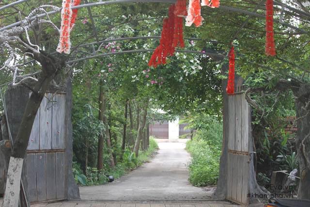 Cuộc sống 'cô đơn' của nghệ sĩ Giang Còi giữa nhà vườn 10.000 mét vuông 1