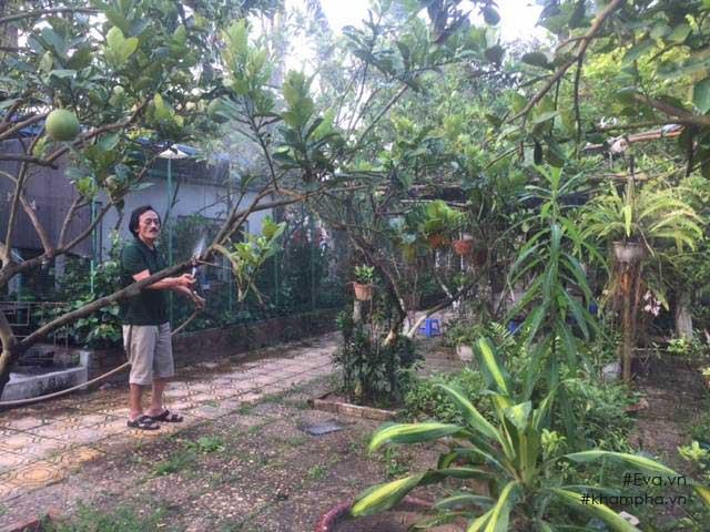 Cuộc sống 'cô đơn' của nghệ sĩ Giang Còi giữa nhà vườn 10.000 mét vuông 6