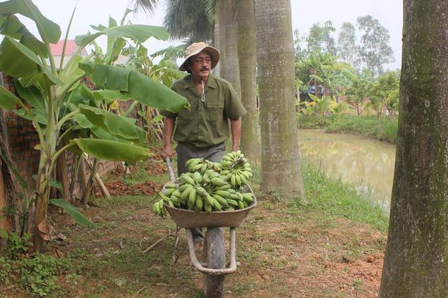Cuộc sống 'cô đơn' của nghệ sĩ Giang Còi giữa nhà vườn 10.000 mét vuông 10